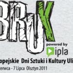 Pierwszy Bruk Festival miał miejsce w 2005 roku w Gdyni. Od zeszłego roku festiwal gości w Olszytnie. | źródło: www.brukfestival.pl