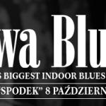 Aż ciężko w to uwierzyć, ale pierwsza edycja festiwalu Rawa Blues miała miejsce w ... 1981 roku! źródło zdjęcia: www.rawablues.com